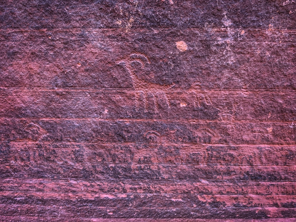 ancient rock carvings of wildlife with horns