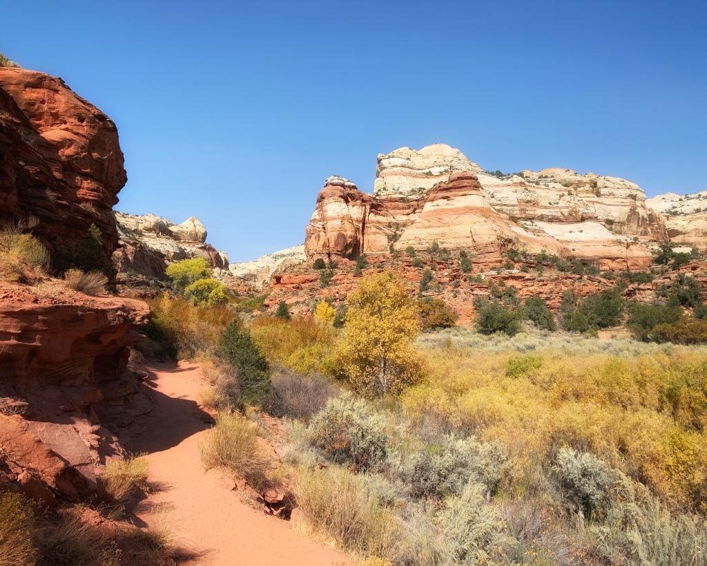 Hiking trail through Utah canyon flanked by fall foliage