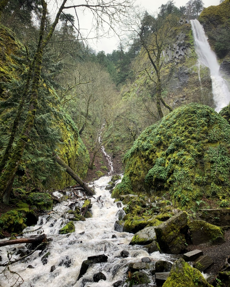 Oregon waterfall and stream surrounded by lush green vegetation