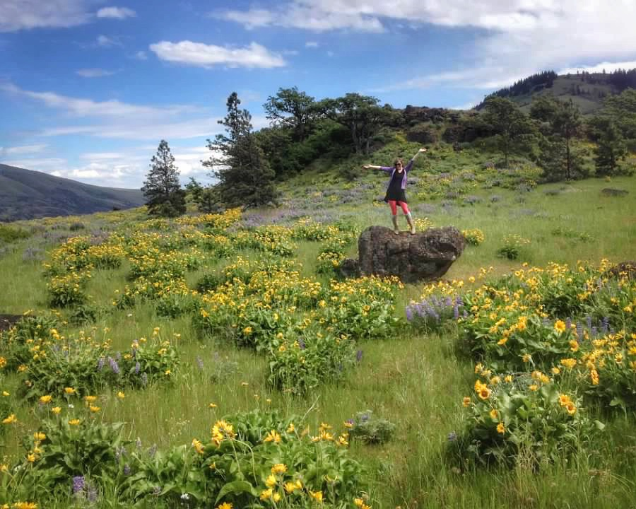 girl standing on a rock in a field blooming with yellow wildflowers